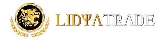 Логотип LidyaTrade